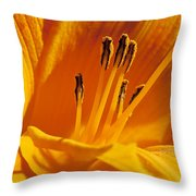 Orange Stamens Throw Pillow