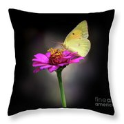 Orange Sulphur Butterfly Portrait Throw Pillow