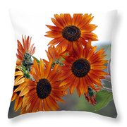 Orange Sunflower 1 Throw Pillow