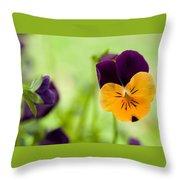 Orange Surprise Throw Pillow