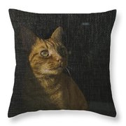 Orange Tabby Cat Looking Throw Pillow