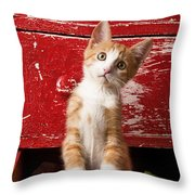 Orange Tabby Kitten In Red Drawer  Throw Pillow