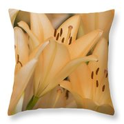 Orange Tiger Lillies Throw Pillow