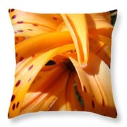 Orange Tiger Lily Flower Art Prints Giclee Baslee Troutman Throw Pillow