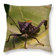 Orange Tipped Antennae Throw Pillow