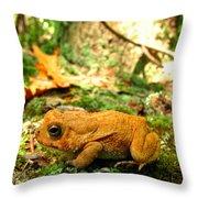 Orange Toad Throw Pillow