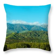 Orange Tree Grove, Santa Paula, Ventura Throw Pillow