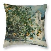 Orange Trees And Gate Throw Pillow