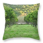 Orange Trees And Sheep Flock Throw Pillow