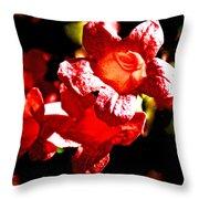 Cross Vine At Pilgrim Place In Claremont-california- Throw Pillow