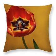 Orange Tulip 2 Throw Pillow