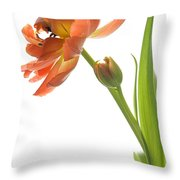 Orange Tulip Throw Pillow