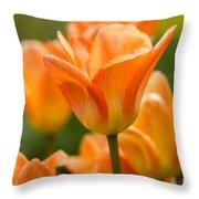 Orange Tulips 2 Throw Pillow