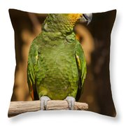 Orange-winged Amazon Parrot Throw Pillow by Adam Romanowicz