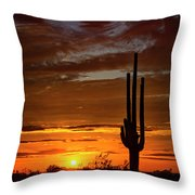 Orange Ya Beautiful Skies  Throw Pillow