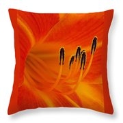 Orange You Glad Throw Pillow
