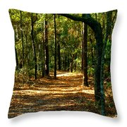 Orangedale Path Throw Pillow