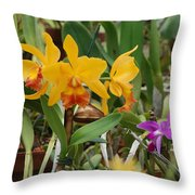 Orangepurple Orchids Throw Pillow