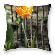 Orangey Tulip Throw Pillow