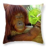 Orangutan Throw Pillow by Carolyn Marshall