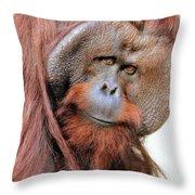 Orangutan Male Closeup Throw Pillow