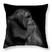 Orangutan Male Looking Up Throw Pillow