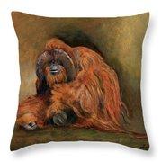 Orangutan Monkey Throw Pillow