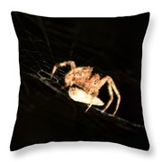 Orb Spider Throw Pillow