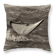 Orca 2 Throw Pillow