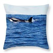 Orca Throw Pillow by Marilyn Wilson