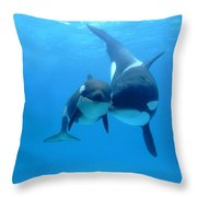 Orca Orcinus Orca Mother And Newborn Throw Pillow by Hiroya Minakuchi