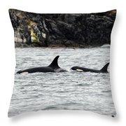 Orcas In The Salish Sea Throw Pillow