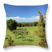 Orchard 1 H Throw Pillow