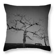 Orchard Bw Throw Pillow