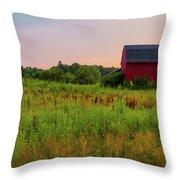 Orchard Evening Throw Pillow