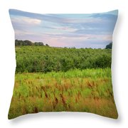 Orchard Hills Throw Pillow