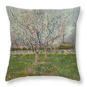 Orchard In Blossom Plum Trees Throw Pillow