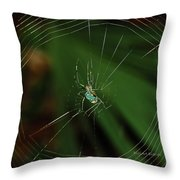 Orchard Orb Throw Pillow
