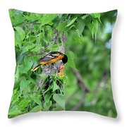 Orchard Oriole Feeding The Kids Throw Pillow
