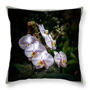 Orchid 1 Triptych Throw Pillow
