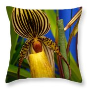 Orchid 10 Throw Pillow