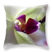 Orchid 2 Throw Pillow