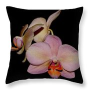 Orchid 2016 1 Throw Pillow