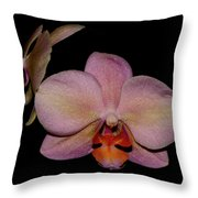Orchid 2016 3 Throw Pillow