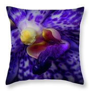 Orchid 2160tg Throw Pillow