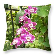 Orchid #4 Throw Pillow