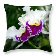 Orchid 6 Throw Pillow