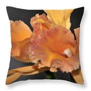 orchid 955 Orange Brassolaeliocattleya Throw Pillow