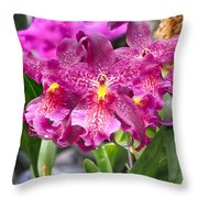 Orchid Aliceara Marfitch Throw Pillow