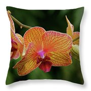 Orchid Aliveness Throw Pillow